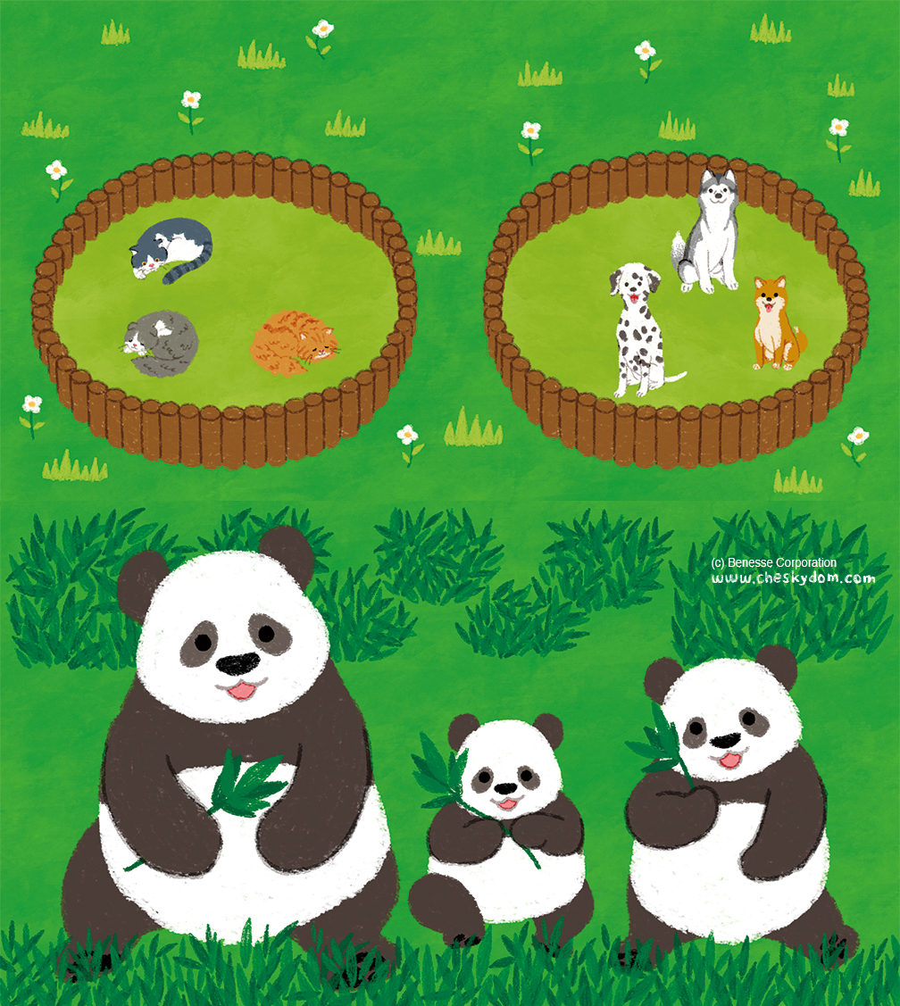犬、猫、パンダのイラスト