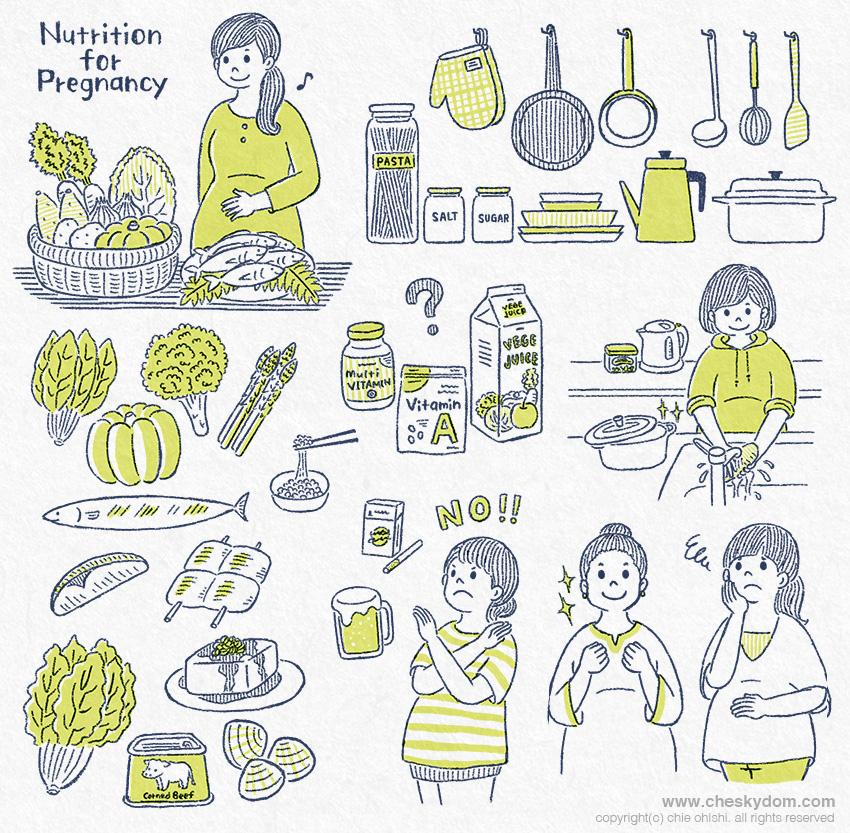 妊婦さんと栄養、食材などのイラスト